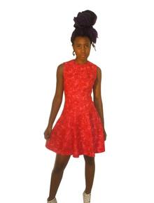 Vintage Floral Print Sleeveless Drop Waist Circular Skirt Short Fit & Flare Mini Mod Dress