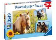 Ravensburger - Loving Horses Puzzle 3x49pc RB08011-3