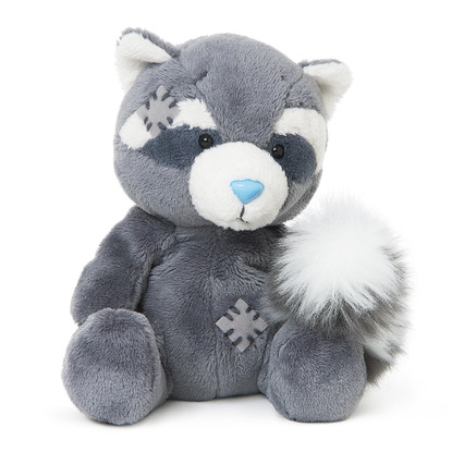 My Blue Nose Friends Roger the Raccoon