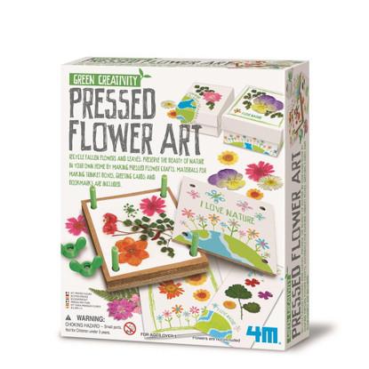 Green Creatviity - Pressed Flower Art