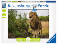 Ravensburger - King of the Lions Puzzle 1000pc Nature Edition No. 14 RB15160-8