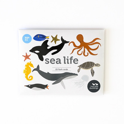 Sea Life Flash Cards - Two Little DucklingsSea Life Flash Cards - Two Little Ducklings