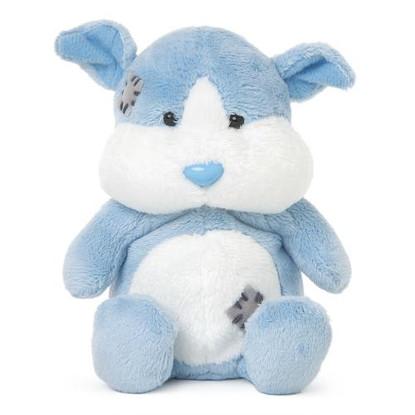 My Blue Nose Friends Fudge the Guinea Pig