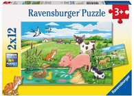Ravensburger - Baby Farm Animals 2 x 12 pc RB07582-9