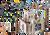 Playmobil - Novelmore Fortress PMB70222 (4008789702227) 1