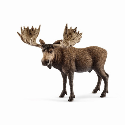 Schleich - Moose Bull SC14781