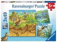 Ravensburger - Animals in their Habitats Puz 3x49 piece RB08050-2
