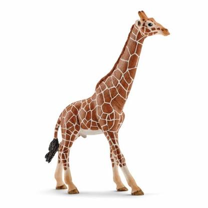 Schleich – Giraffe Male 14749