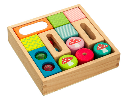 Wooden Discovery Blocks