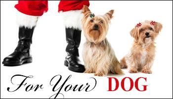 christmas-holiday-banner-dogs-c.jpg