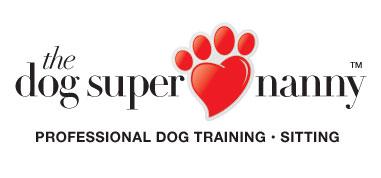 dsn-logo.jpg