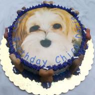 Dog Birthday Cake | Photo Image