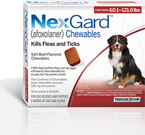 Nexgard for Dogs 60.1-121 lbs - 6 Pack
