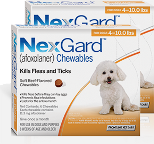 Nexgard for Dogs 4-10 lbs - 12 Pack