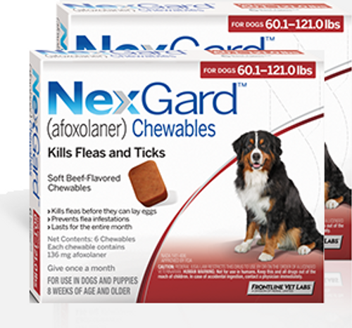 Nexgard for Dogs 60.1-121 lbs - 12 Pack