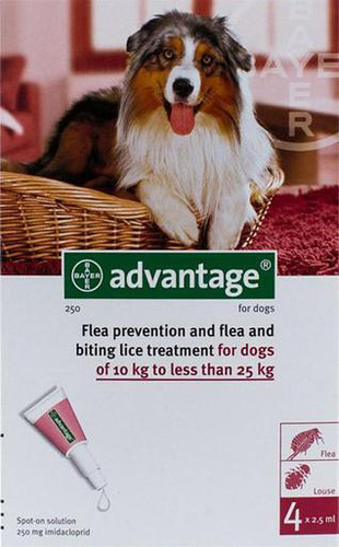 Advantage Red 4 Pack Large Dogs 21-55 lbs