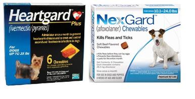 Nexgard And Heartgard Combo For Dogs 10 1 24 Lbs 6