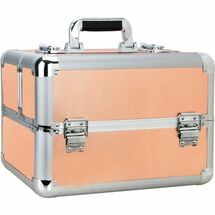 Small Rose Gold Professional Cosmetic Case with 4 Extendable Trays and Dividers