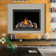NAPOLEON Direct Vent Gas Fireplace High Definition 46 - HD46NT-1 High Definition Series