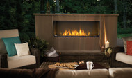 Napoleon Galaxy™ - GSS48 Gas Fireplace