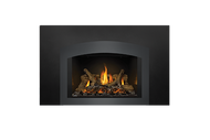 Napoleon GDIX4 Oakville Series Gas Fireplace Insert