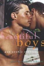Beautiful Boys : Gay Erotic Fiction