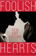 Foolish Hearts : New Gay Fiction