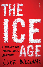 The Ice Age: a Journey into Crystal Meth Addiction