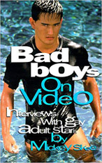 Bad Boys on Video: Interviews with Gay Adult Stars Volume One