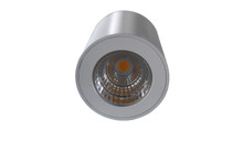 Citizen LED, surface mounted down light -Matt white