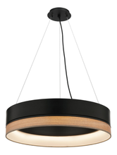 Fitz Round Dimmable LED Pendant Light in Black