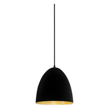 Egg Black Label Brass Pendant Light