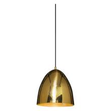 Egg Brass Pendant Light