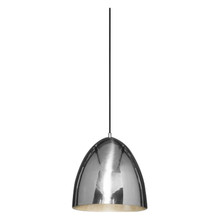 Egg Silver Pendant Light