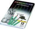 Prismacolor Turquoise Drawing Pencil 12 ct set   Pen Mountain
