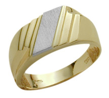 Men's 10 Karat Two-Tone Gold Stylish Ring