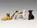 "HK239 ""A Small Pack of Dogs by King and Country"
