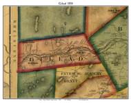 Gilead, Maine 1858 Old Town Map Custom Print - Oxford Co.