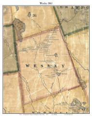 Wesley, Maine 1861 Old Town Map Custom Print - Washington Co.