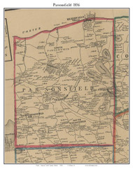 Parsonfield, Maine 1856 Old Town Map Custom Print - York Co.