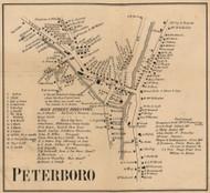 Peterboro Village, New Hampshire 1858 Old Town Map Custom Print - Hillsboro Co.