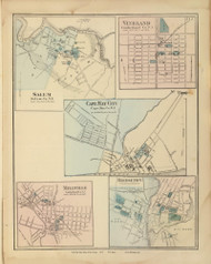 Salem, Vineland, Cape May City, Millville, and Bridgeton, New Jersey 1872 Old Town Map Reprint - State Atlas