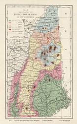 New Hampshire Tree Distribution Map - 1877 Old Map Reprint - Comstock & Cline State Atlas of NH