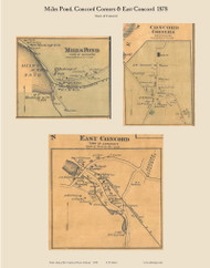 Miles Pond, Concord Corners, & East Concord, Vermont 1878 Old Town Map Custom Print - Essex Co.