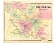 Shrewsbury, Vermont 1869 Old Town Map Reprint - Rutland Co.