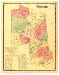 Weston, Vermont 1869 Old Town Map Reprint - Windsor Co.