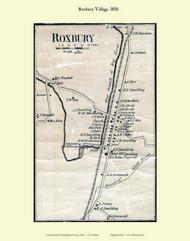 Roxbury Village, Vermont 1858 Old Town Map Custom Print - Washington Co.
