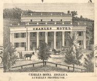 Charles Hotel, New York 1856 Old Town Map Custom Print - Allegany Co.