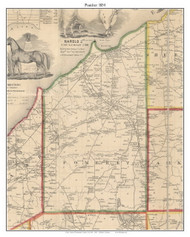 Pomfret, New York 1854 Old Town Map Custom Print - Chautauque Co.