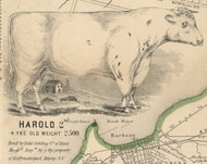 Harold the Cow, New York 1854 Old Town Map Custom Print - Chautauque Co.